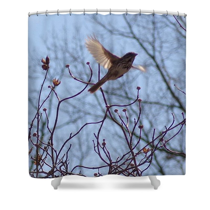 Spring Shower Curtain featuring the photograph Love Is In The Air by Jannice Walker