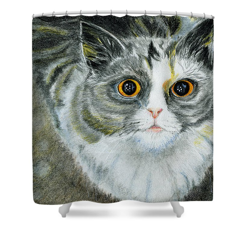 Cat Shower Curtain featuring the drawing Love Me by Angela Courtney