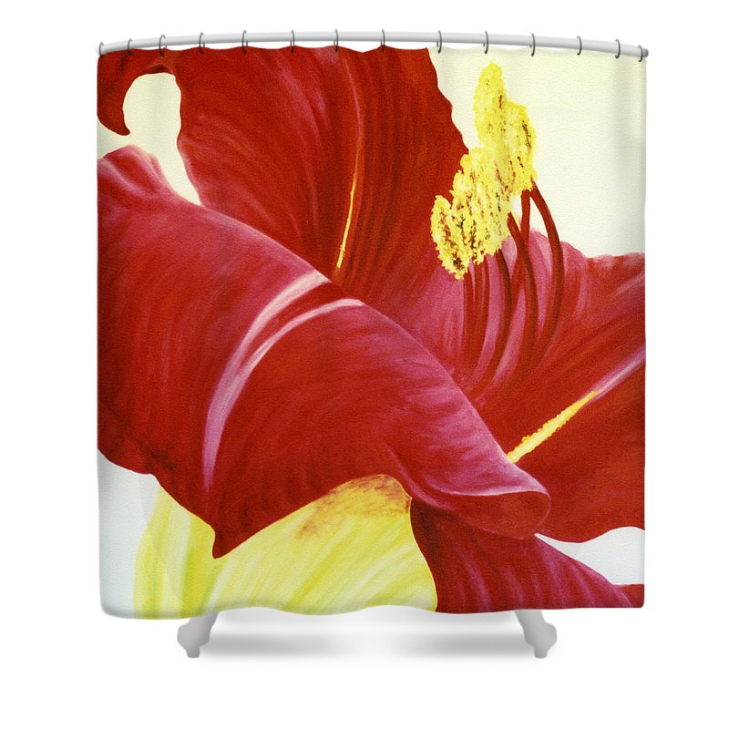 Floral Print Shower Curtain featuring the painting Lovely Lily Floral Print by Diane Jorstad