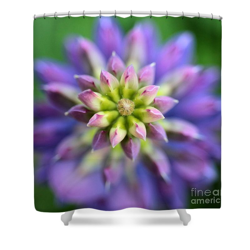 Lupine Shower Curtain featuring the photograph Lupine - Top Down by Kenny Glotfelty