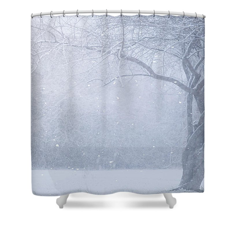 Snow Shower Curtain featuring the photograph Magic Of The Season by Carrie Ann Grippo-Pike