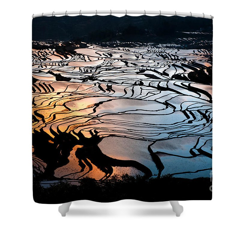 Agriculture Shower Curtain featuring the photograph Magnificent Rice Terrace by Kim Pin Tan