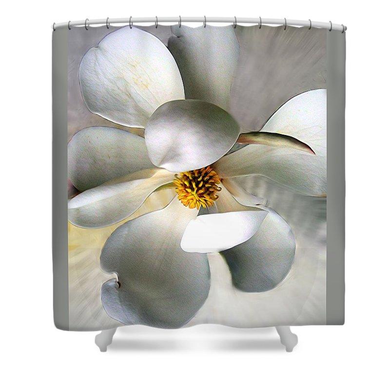 Magnolia Shower Curtain featuring the photograph Magnolia by Savannah Gibbs