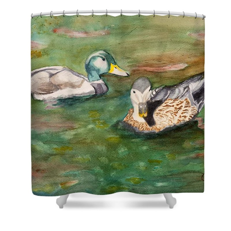 Ducks Shower Curtain featuring the painting Mallard Ducks With Spawning Salmon by Charlotte Brux-Bolinger