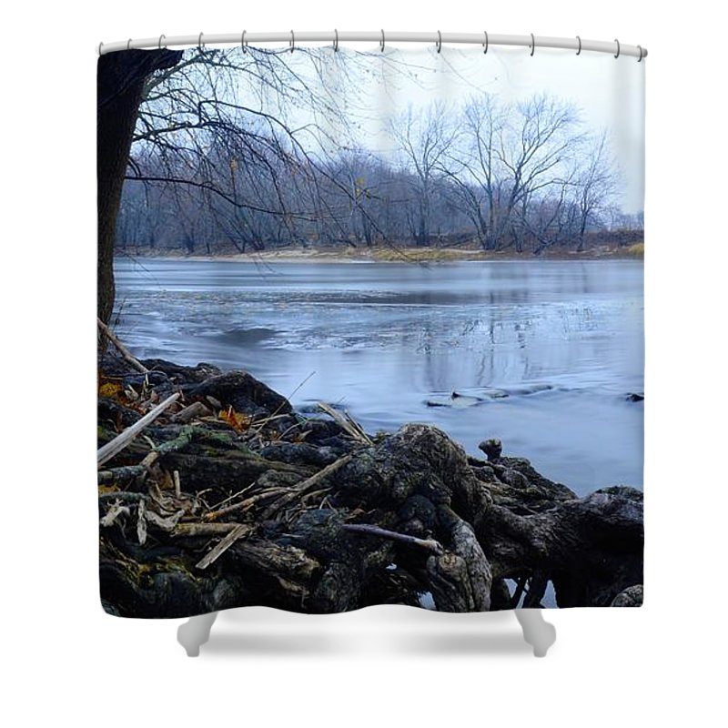 Root Shower Curtain featuring the photograph Maple Root by Bonfire Photography