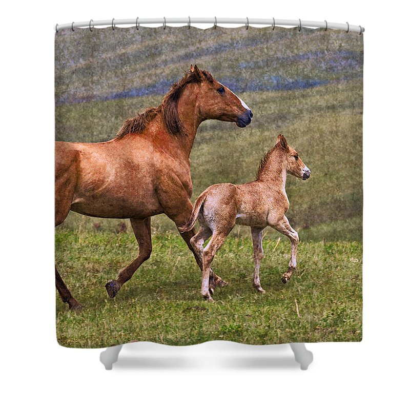 Horse Shower Curtain featuring the photograph Mare And Foal by Ingrid Smith-Johnsen