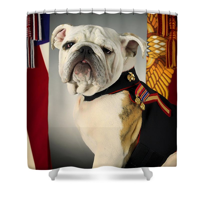 United States Marine Corps Shower Curtain featuring the photograph Mascot Of The United States Marine Corps by Mountain Dreams