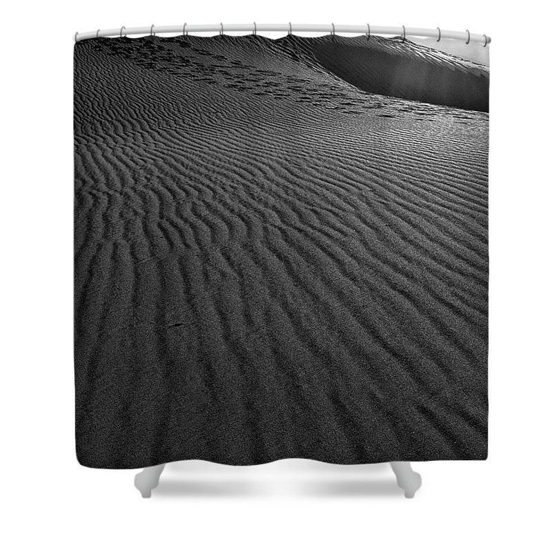 Mesquite Sand Dunes Shower Curtain featuring the photograph Mesquite Sand Dunes by Angela Stanton