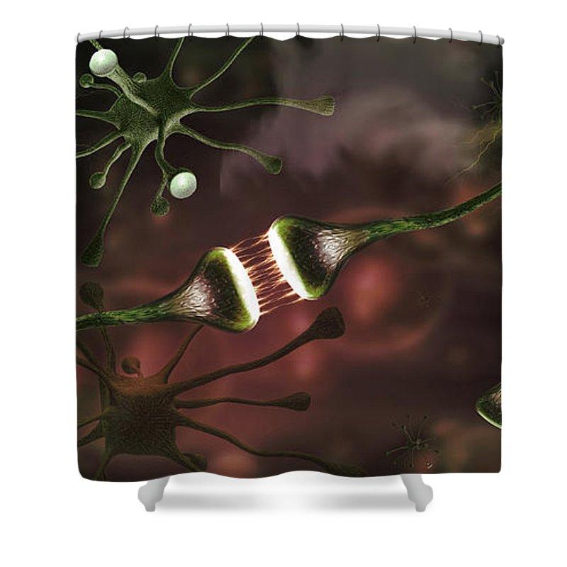 Neurology Shower Curtains
