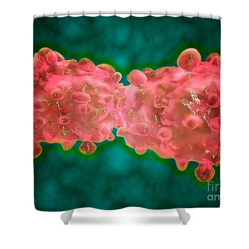 Color Image Shower Curtain featuring the digital art Microscopic View Of A Leukemia Cell by Stocktrek Images