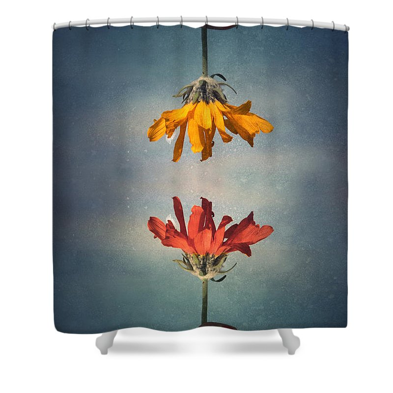 Middle Ground Shower Curtain featuring the photograph Middle Ground by Tara Turner