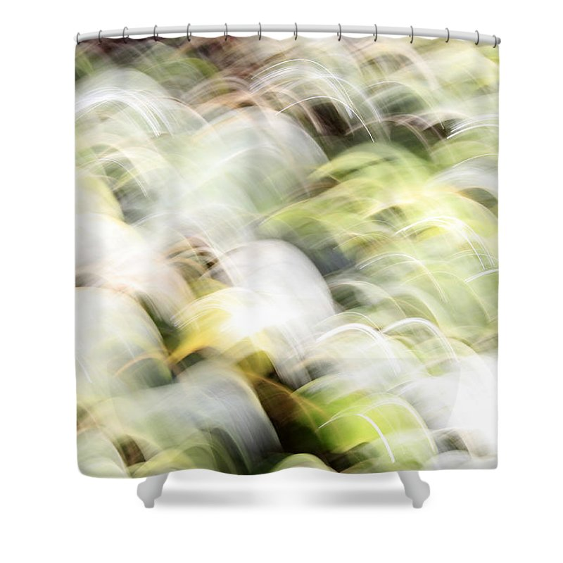 Migratory Shower Curtain featuring the photograph Migratory Birds by Munir Alawi
