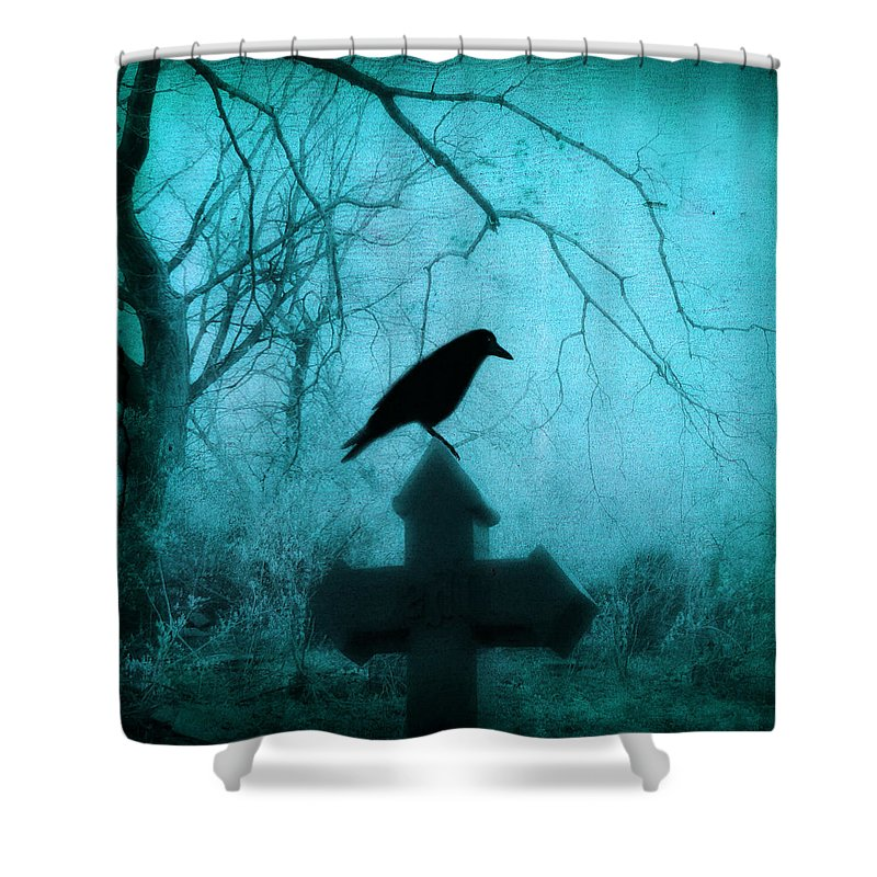Crow On Cross Shower Curtain featuring the photograph Misted Blue by Gothicrow Images