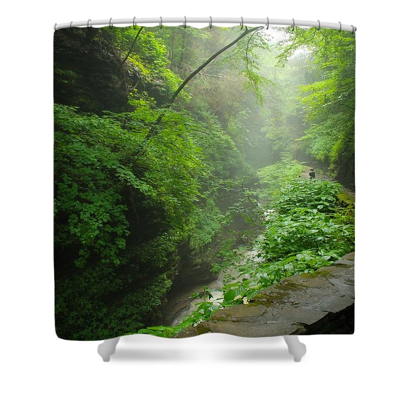 Canyons Shower Curtain featuring the photograph Misty Evening At Watkins Glen by Nunweiler Photography