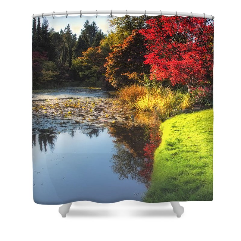 Pool Shower Curtain featuring the photograph Misty Fall by Eti Reid