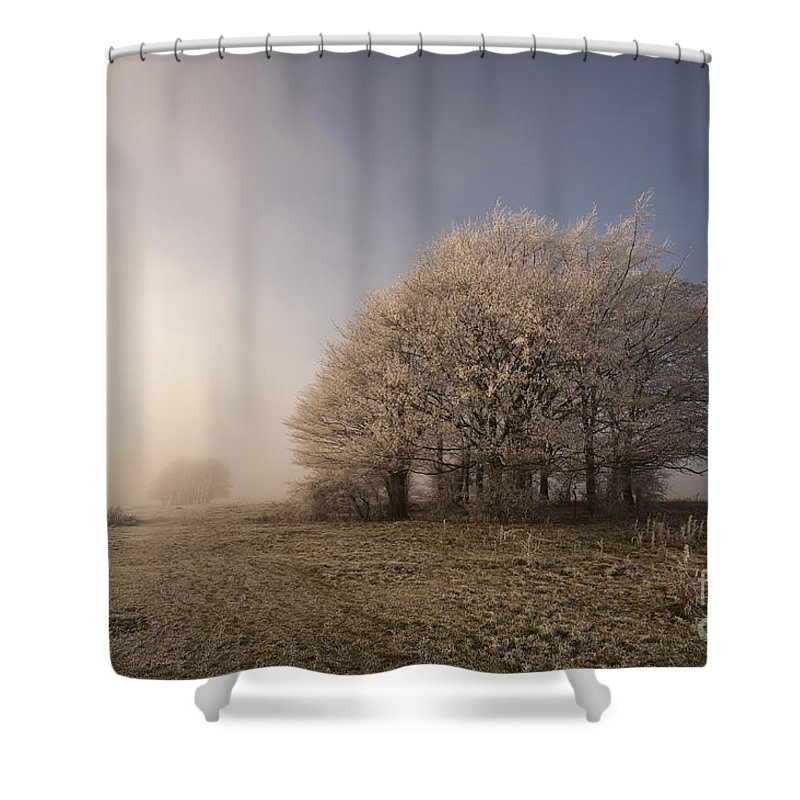 Autumn Shower Curtain featuring the photograph Misty Morn by Anne Gilbert