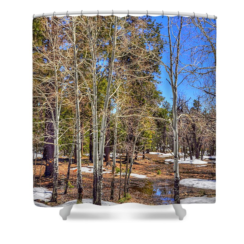 Nature Shower Curtain featuring the photograph Mogollon Spring 1 by Jerry Sodorff