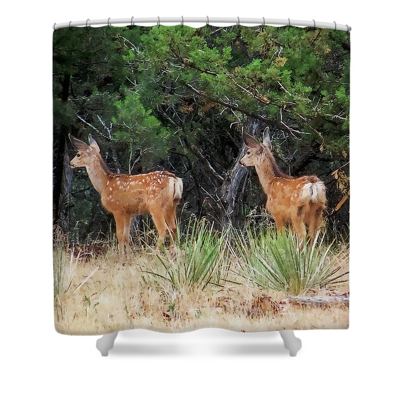 Deer Shower Curtain featuring the digital art Mommy where are you by Ernie Echols