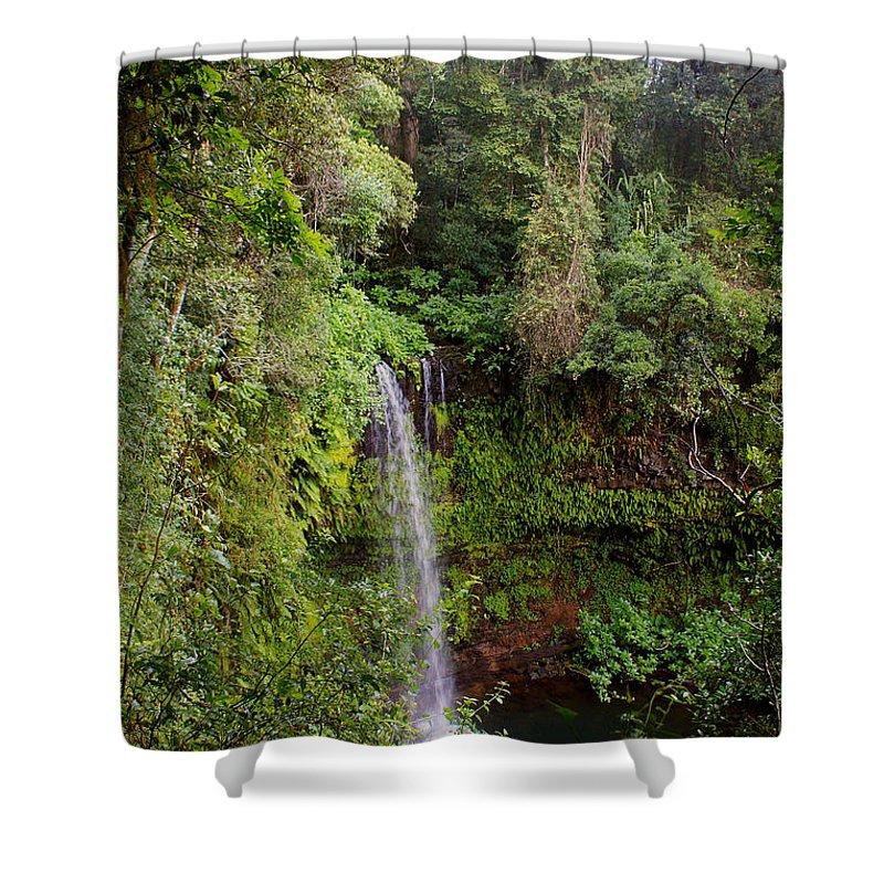 Nature Shower Curtain featuring the photograph Montagne D'ambre National Park Madagascar 5 by Rudi Prott