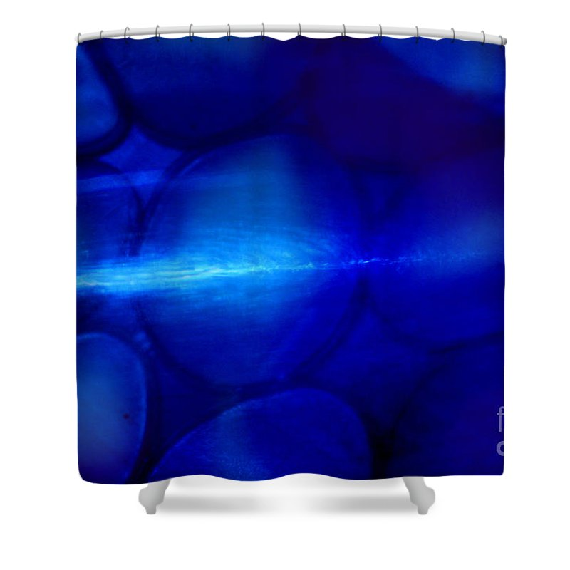 Blue Shower Curtain featuring the photograph Moody Blues by Karen Adams