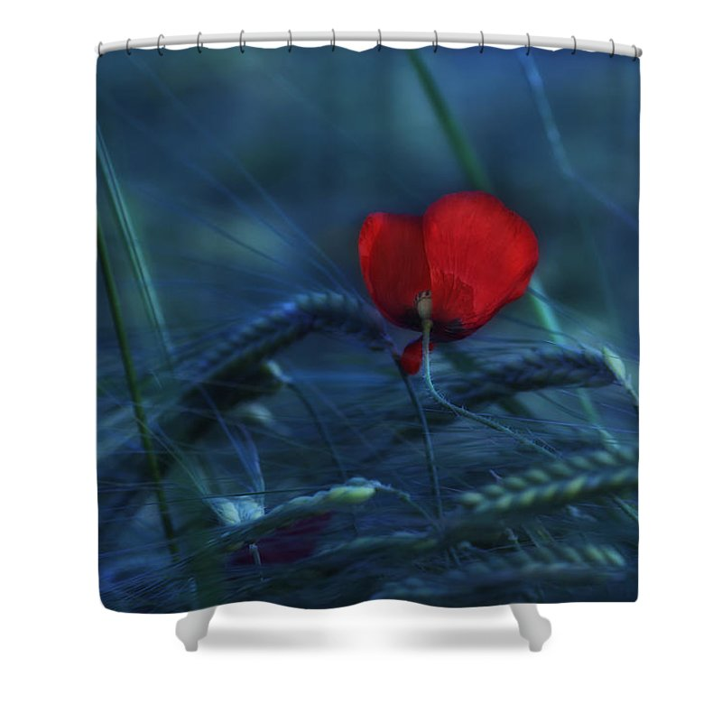 Poppy Shower Curtain featuring the photograph Moonlight by Claudia Moeckel