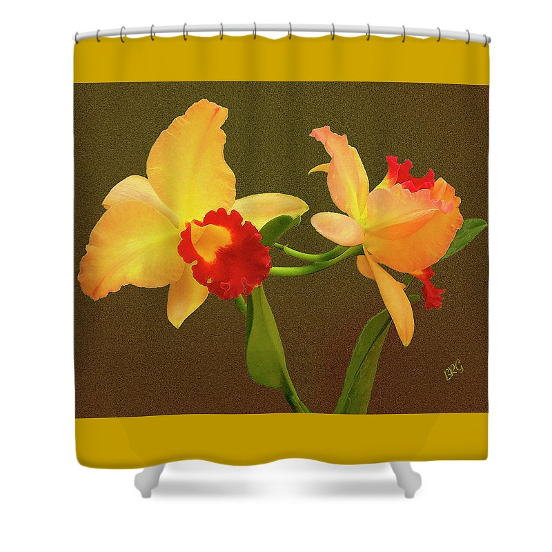 Orchid Shower Curtain featuring the photograph Moonlight Lady Orchid by Ben and Raisa Gertsberg