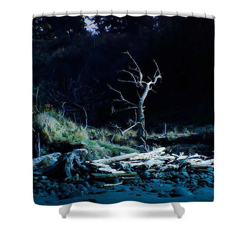 Adria Trail Shower Curtain featuring the photograph Moonlit Beach Snag by Adria Trail