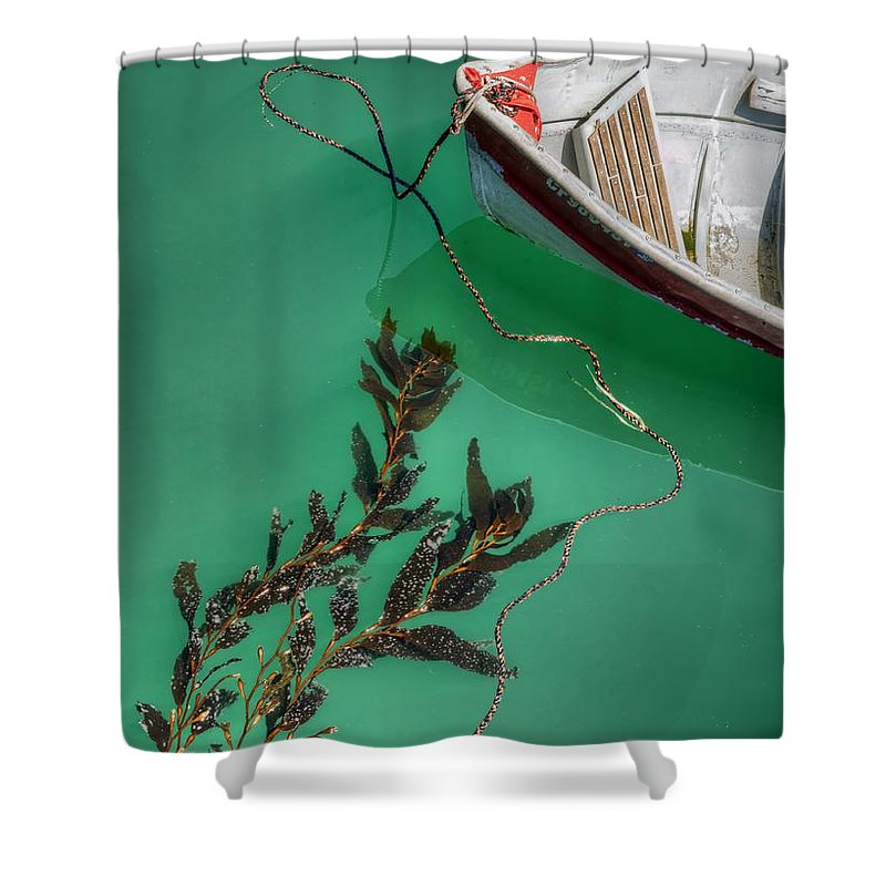 Boat Shower Curtain featuring the photograph Moored Boat And Kelp by Nikolyn McDonald