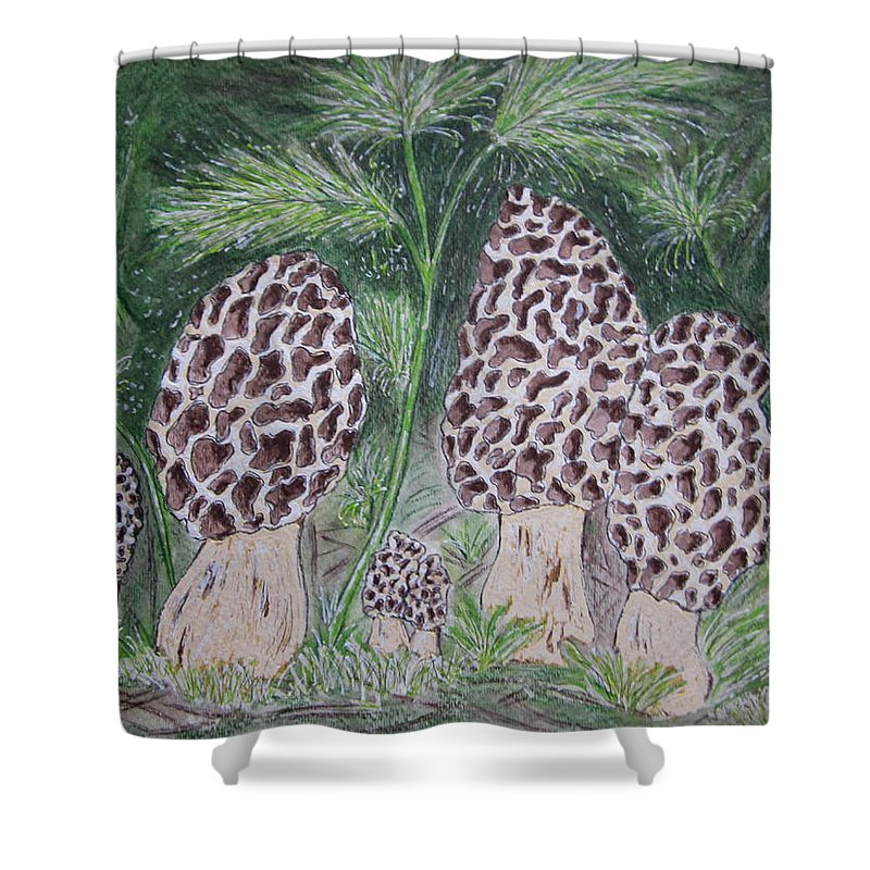 Morel Shower Curtain featuring the painting Morel Mushrooms by Kathy Marrs Chandler