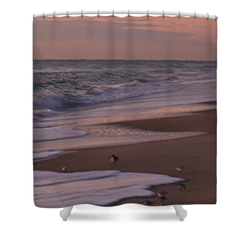 Beach Shower Curtain featuring the photograph Morning Birds At The Beach by Nadine Rippelmeyer