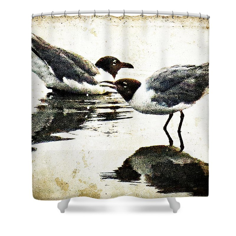 Seagull Shower Curtain featuring the painting Morning Gulls - Seagull Art By Sharon Cummings by Sharon Cummings