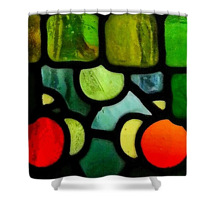 Photography Shower Curtain featuring the photograph Morris Stained Glass by Nikki Dalton