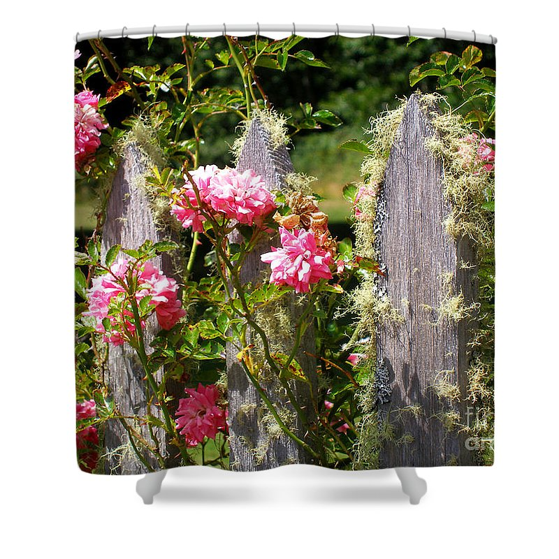 Oysterville Shower Curtain featuring the photograph Moss Fence by Dawn Kori Snyder