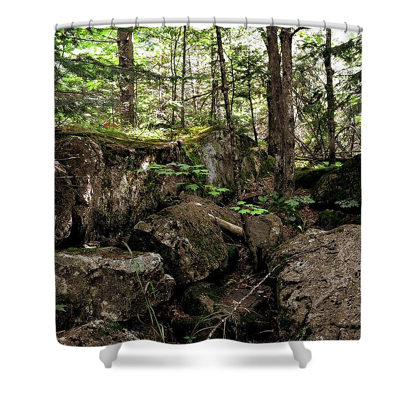 Rock Shower Curtain featuring the photograph Mossy Rocks In The Forest by Michelle Calkins
