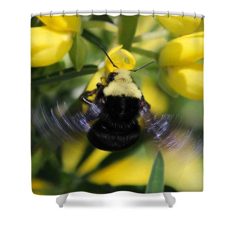 Spider Shower Curtain featuring the photograph Motion by Ru Tover