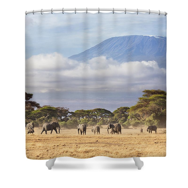 East Africa Photographs Shower Curtains