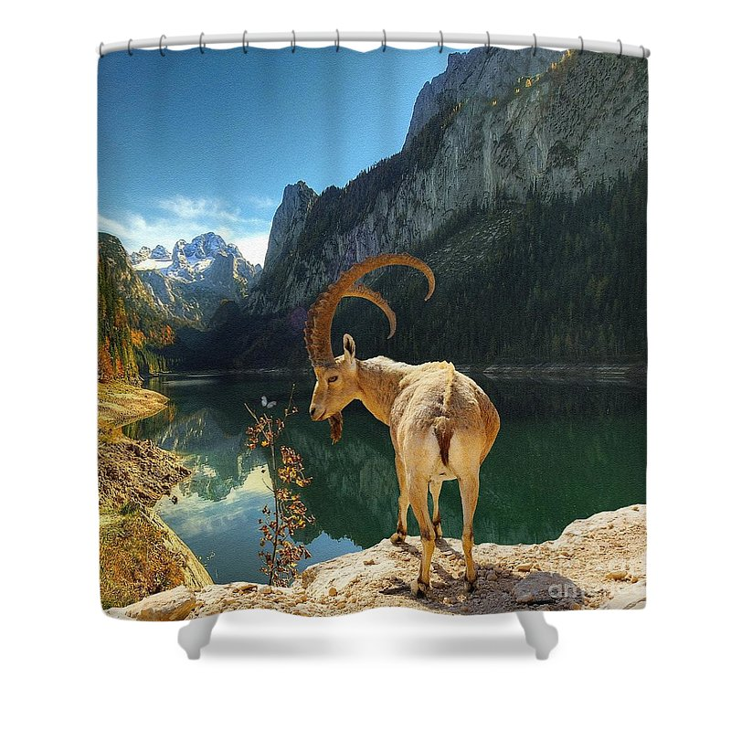 Liane Shower Curtain featuring the photograph Mountain Goat by Liane Wright