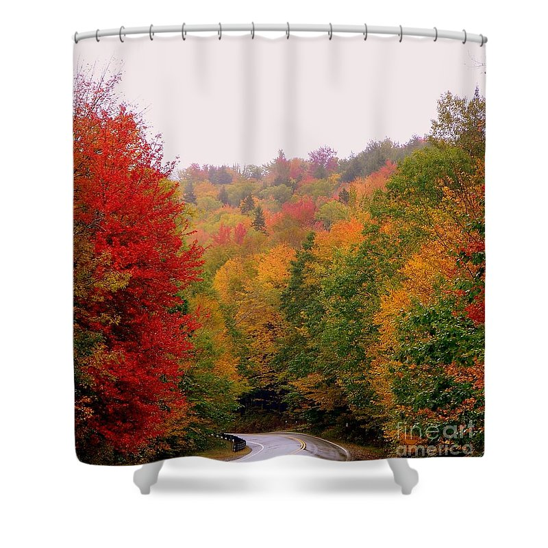Autumn Shower Curtain featuring the photograph Mountain Road In Fall by Eunice Miller