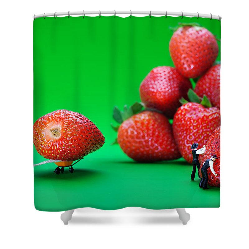 Physics Shower Curtain featuring the photograph Moving Strawberries To Depict Friction Food Physics by Paul Ge