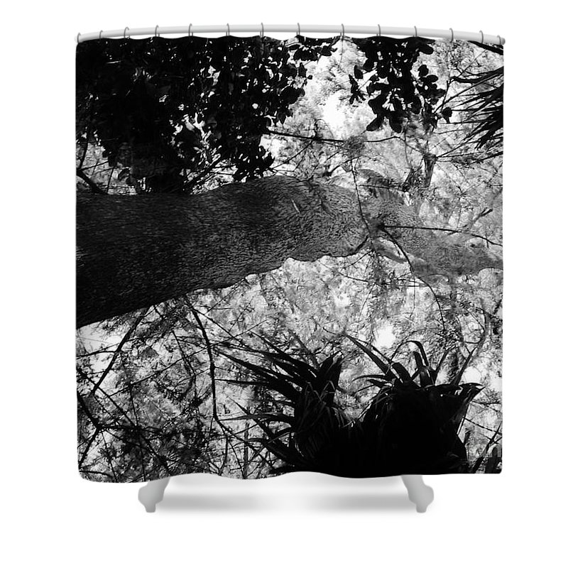 Keri West Shower Curtain featuring the photograph Moving Up by Keri West