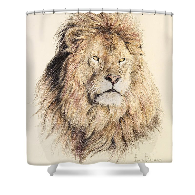 Male Shower Curtains