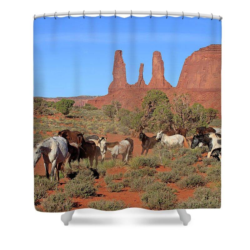 Scenics Shower Curtain featuring the photograph Mustang by Tier Und Naturfotografie J Und C Sohns