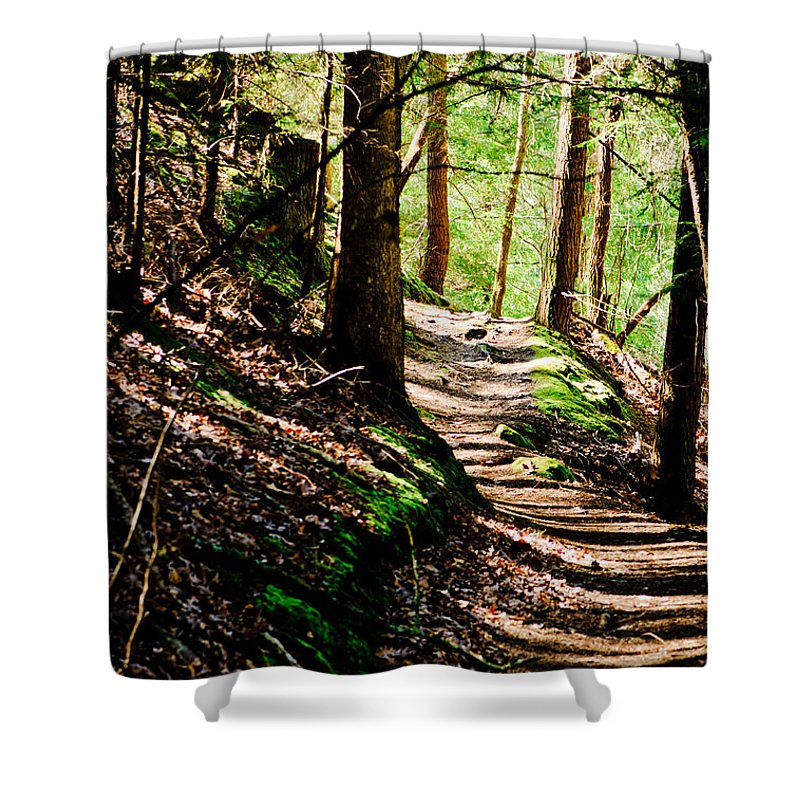 Path Shower Curtain featuring the photograph My Path by Shirley Tinkham