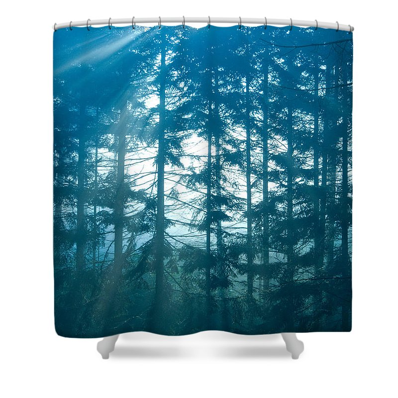 Nature Shower Curtain featuring the photograph Mystic Light by Daniel Csoka