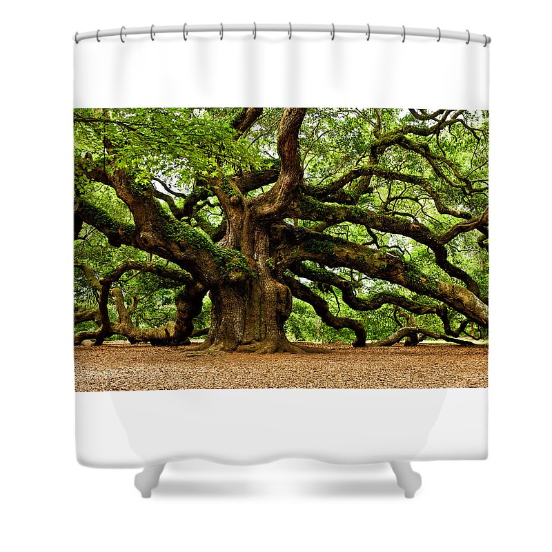 Charleston Shower Curtain featuring the photograph Mystical Angel Oak Tree by Louis Dallara