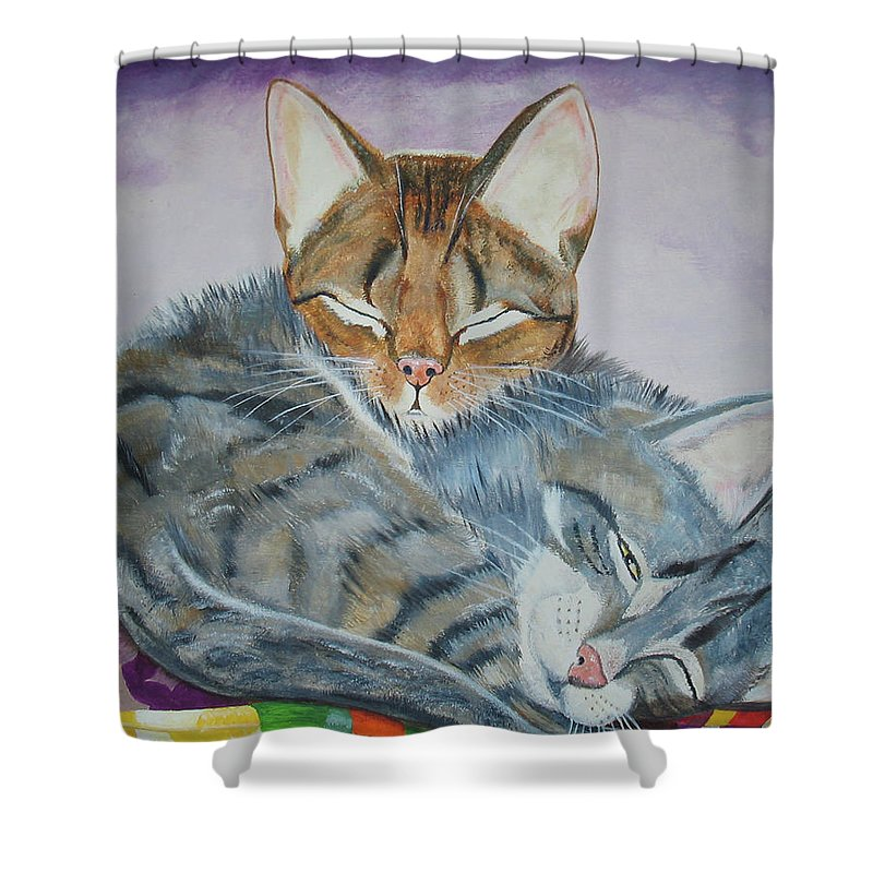 Pillow Shower Curtain featuring the painting Nap Time by Thomas J Herring