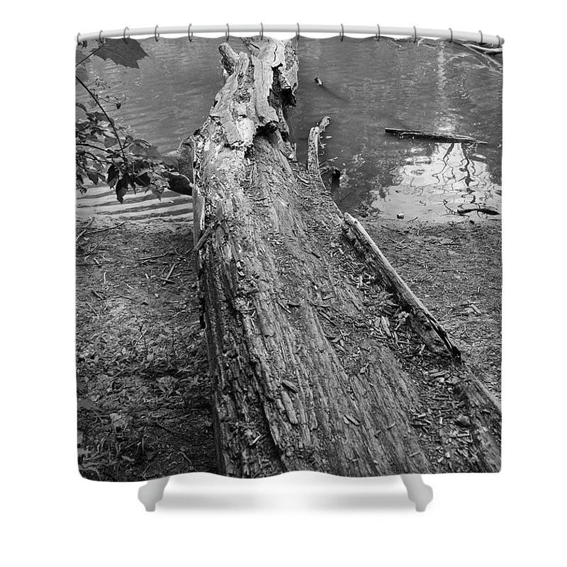 River Shower Curtain featuring the photograph Natural Change In Bw by Thomas Woolworth