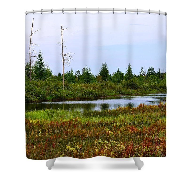 Nature Shower Curtain featuring the photograph Natural Masterpiece by Michael Tucker