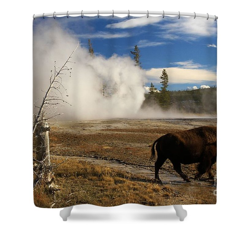Vent Geyser Shower Curtain featuring the photograph Natural Warmth by Adam Jewell