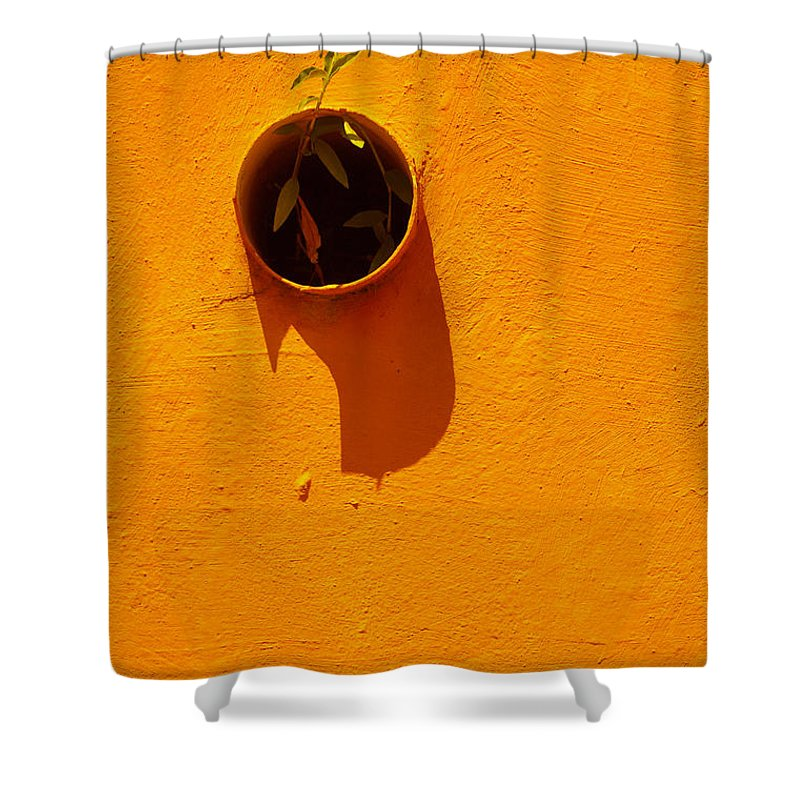 Fine Arts Brazil-masterpice Shower Curtain featuring the photograph Nature Don't Stop Limited Edition 1 Of 1 by Ordi Calder